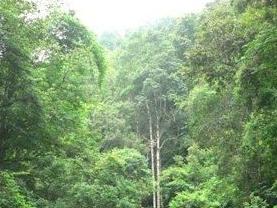 滑水冲自然保护区