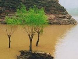 景泰黄河石林
