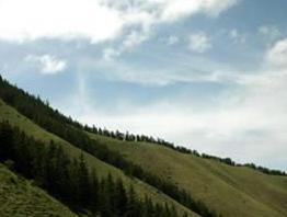 寿鹿山自然保护区