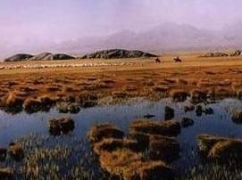 小苏干湖自然保护区