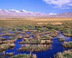 黄河三峡湿地自然保护区