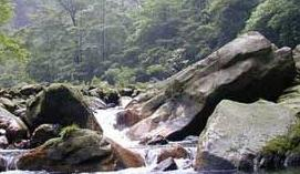 夏家沟森林公园