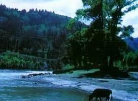 香山自然保护区