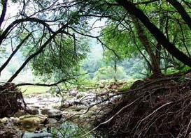 头二三滩自然保护区