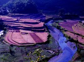 龍首山自然保護區