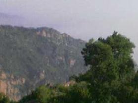 大茂山原始森林