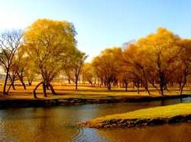 白河湿地公园