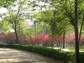 漯河人民公园