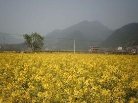 梅城风景区