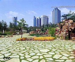 上海延中绿地