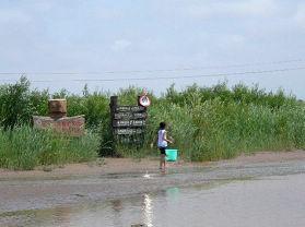 黄河入海口生态农业观光园