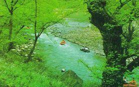米倉山森林公園