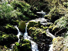 瓦屋山国家森林公园