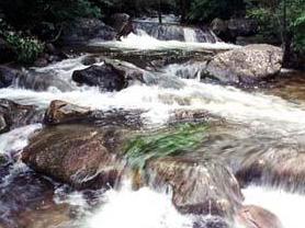 天津八仙山国家级自然保护区