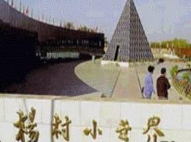 杨村小世界