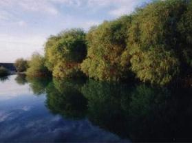 巴州博湖县阿洪口旅游风景区