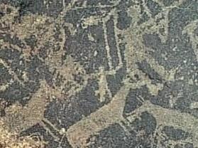 且末古代岩画