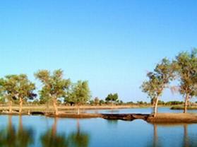 塔里木河与塔克拉玛干游览区